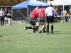 Camelback-Rugby-Vs-Hurricanes-DIII-Playoffs-246