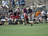 Camelback-Rugby-Vs-Hurricanes-DIII-Playoffs-266