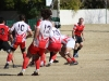 Camelback-Rugby-Vs-Red-Mountain-Rugby-151
