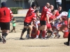 Camelback-Rugby-Vs-Red-Mountain-Rugby-160