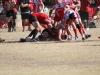 Camelback-Rugby-Vs-Red-Mountain-Rugby-172